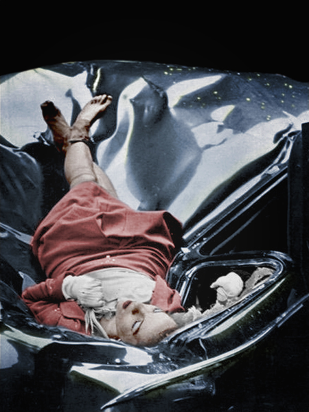 After jumping from the observation deck 23 year old evelyn mchale